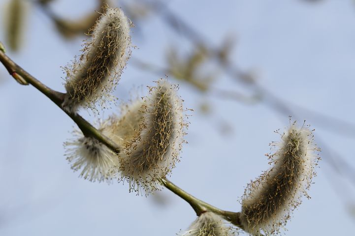 Illustrativ bild.